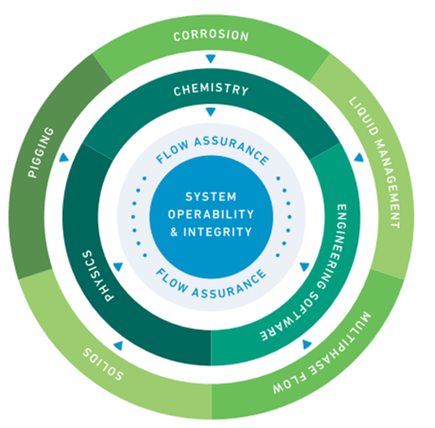 Figure 3 – ROSEN Flow Assurance Service